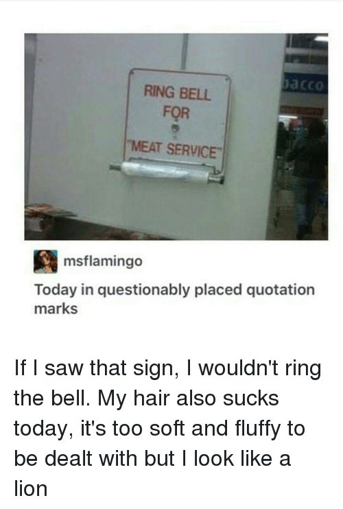 """Memes, Lion, and Lions: Daa CCO  RING BELL  FOR  """"MEAT SERVICE  msflamingo  Today in questionably placed quotation  marks If I saw that sign, I wouldn't ring the bell. My hair also sucks today, it's too soft and fluffy to be dealt with but I look like a lion"""