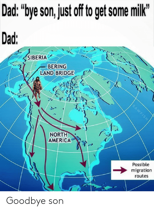 """north america: Dad. """"bye son,just off to get some milk  Dad  SIBERIA  BERING  LAND BRIDGE  NORTH  AMERICA  Possible  migration  routes Goodbye son"""