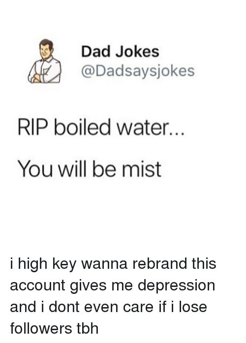 i dont even care: Dad Jokes  @Dadsaysjokes  RIP boiled water...  You will be mist i high key wanna rebrand this account gives me depression and i dont even care if i lose followers tbh