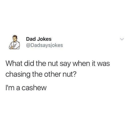 Dad Funny And Tumblr Jokes Dadsaysjokes What Did The Nut Say When It Was Chasing Other Im A Cashew