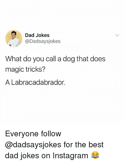 Dad, Instagram, and Memes: Dad Jokes  @Dadsaysjokes  What do you call a dog that does  magic tricks?  A Labracadabrador. Everyone follow @dadsaysjokes for the best dad jokes on Instagram 😂