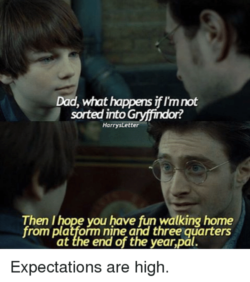 Harry Potter, Fun, and Platform: Dad, what happens iflmnot  sorted into G  Harrys Letter  Then I hope you have fun walking home  from platform nine and three quarters  at the end of the year,pal. Expectations are high.