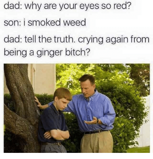 Tell The Truth: dad: why are your eyes so red?  son: i smoked weed  dad: tell the truth. crying again from  being a ginger bitch?