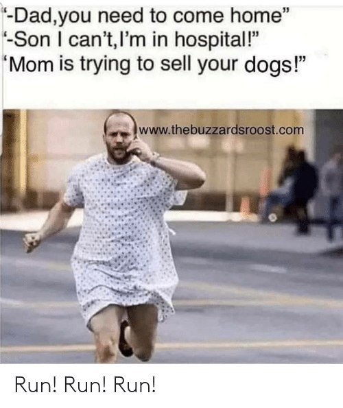 """come-home: -Dad,you need to come home""""  -Son I can't,I'm in hospital!""""  Mom is trying to sell your dogs!""""  www.thebuzzardsroost.com Run! Run! Run!"""