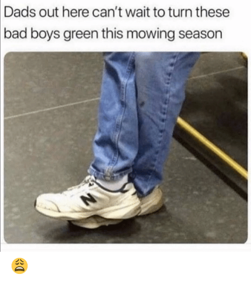 Bad Boys: Dads out here can't wait to turn these  bad  boys green this mowing season 😩