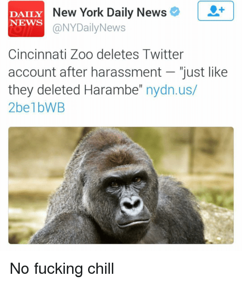Fucking, Funny, and New York: DAILY  New York Daily News  NEWS  @NYDailyNews  Cincinnati Zoo deletes Twitter  account after harassment just like  they deleted Harambe  nydn.us/  2belbWB No fucking chill