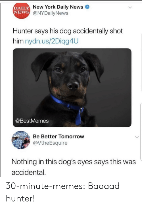 Accidental: DAILY  NEWS  New York Daily News  @NYDailyNews  Hunter says his dog accidentally shot  him nydn.us/2Diagg4UU  @BestMemes  Be Better Tomorrow  @VtheEsquire  Nothing in this dog's eyes says this was  accidental. 30-minute-memes: Baaaad hunter!