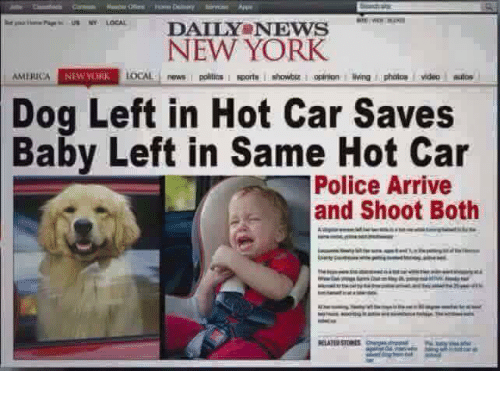 Dog Left In Hot Car Saves Baby
