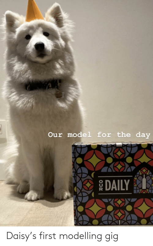 modelling: Daisy's first modelling gig