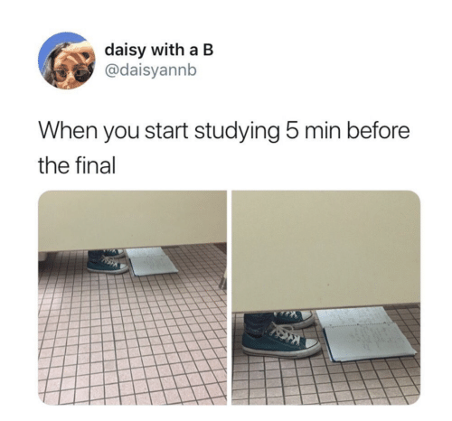 daisy: daisy with a B  @daisyannb  When you start studying 5 min before  the final