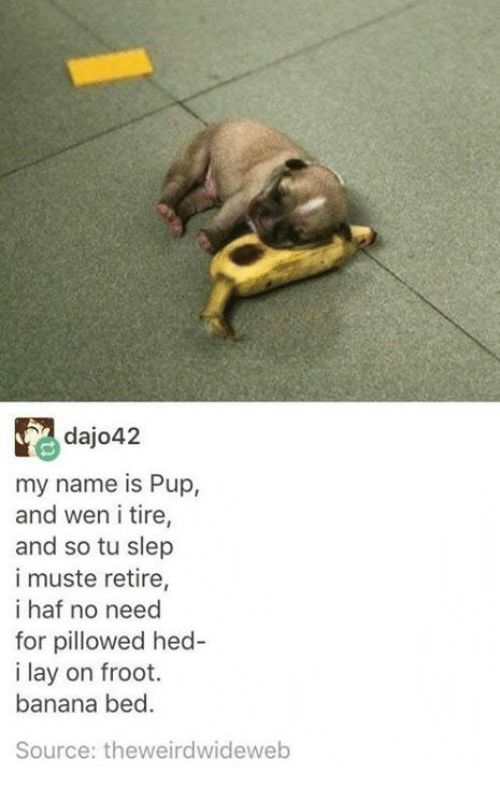 Banana, Pup, and Source: dajo42  my name is Pup,  and wen i tire  and so tu slep  i muste retire  i haf no need  for pillowed hed-  i lay on froot.  banana bed.  Source: theweirdwideweb