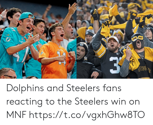 Steelers Fans: Dal  Steel Dolphins and Steelers fans reacting to the Steelers win on MNF https://t.co/vgxhGhw8TO