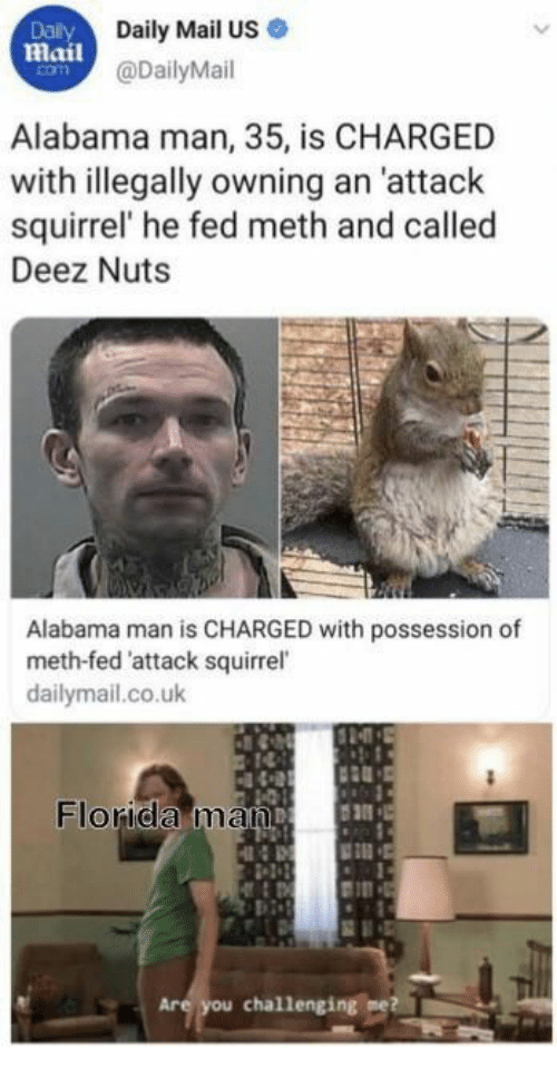 Deez Nuts: Dalily  Daily Mail US  Mail@DailyMail  com  Alabama man, 35, is CHARGED  with illegally owning an 'attack  squirrel' he fed meth and called  Deez Nuts  Alabama man is CHARGED with possession of  meth-fed 'attack squirrel  dailymail.co.uk  Florida man  Are you challenging me