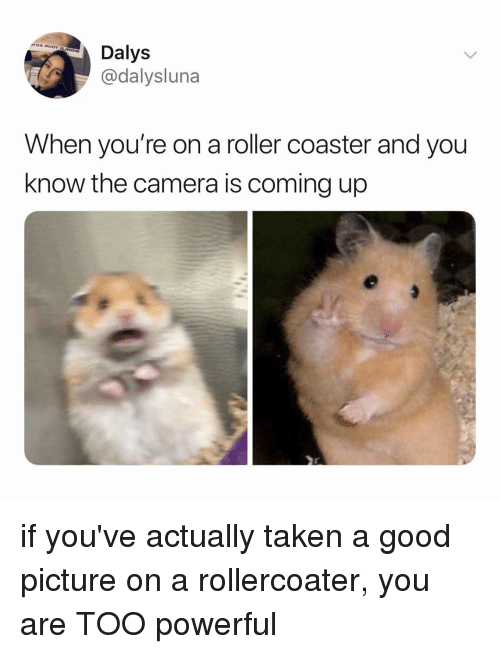 roller coaster: Dalys  @dalysluna  When you're on a roller coaster and you  know the camera is coming up if you've actually taken a good picture on a rollercoater, you are TOO powerful