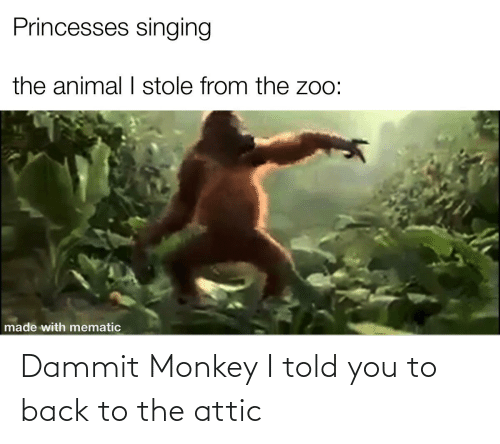 Told You: Dammit Monkey I told you to back to the attic