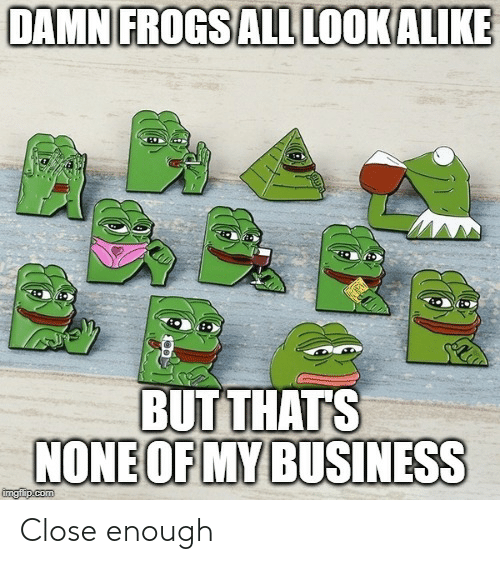Thats None Of My Business: DAMN FROGS AL LOOK ALIKE  BUT THATS  NONE OF MY BUSINESS  imgiip.com Close enough