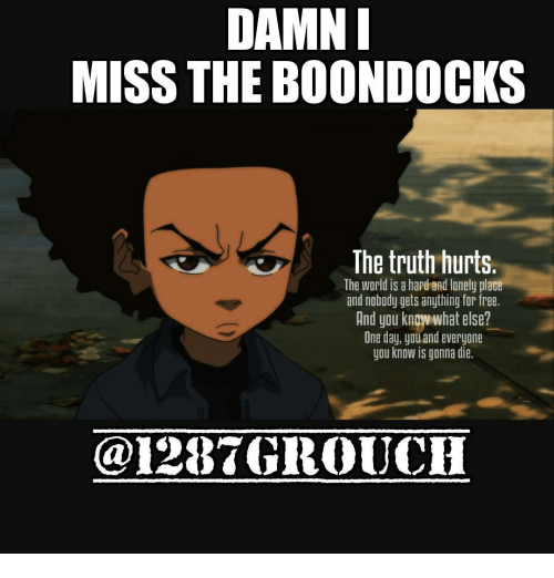 Memes, The Boondocks, and Boondocks: DAMN  MISS THE BOONDOCKS  The truth hurts.  The World is a hapd and lonely place  and nobody gets anything for free.  And you knowwhat else?  One day, you and everyone  you know is gonna die.  @1287 GROUCH