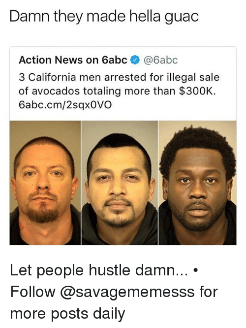 Memes, News, and California: Damn they made hella guac  Action News on 6abc @6abc  3 California men arrested for illegal sale  of avocados totaling more than $300K.  6abc.cm/2sqx0VO Let people hustle damn... • Follow @savagememesss for more posts daily