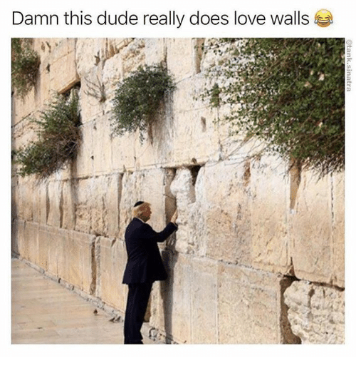 Dank, Dude, and Love: Damn this dude really does love walls