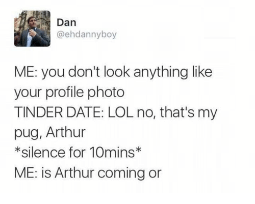 Arthur, Dank, and Lol: Dan  @ehdannyboy  ME: you don't look anything like  your profile photo  TINDER DATE: LOL no, that's my  pug, Arthur  *silence for 10mins  ME: is Arthur coming or