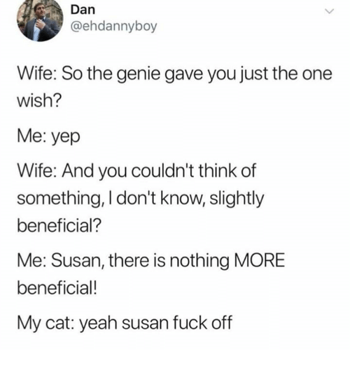 Humans of Tumblr: Dan  @ehdannyboy  Wife: So the genie gave you just the one  Wish?  Me: yep  Wife: And you couldn't think of  something, I don't know, slightly  beneficial?  Me: Susan, there is nothing MORE  beneficial!  My cat: yeah susan fuck off