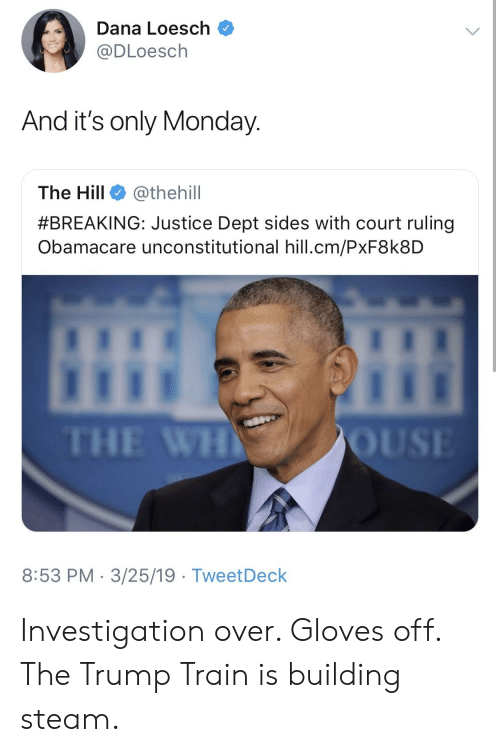 gloves off: Dana Loesch  @DLoesch  And it's only Monday  The Hill @thehill  #BREAKING: Justice Dept sides with court ruling  Obamacare unconstitutional hill.cm/PxF8k8D  THE WH  8:53 PM 3/25/19 TweetDeck Investigation over. Gloves off. The Trump Train is building steam.
