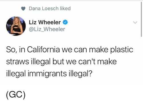 Memes, California, and 🤖: Dana Loesch liked  Liz Wheeler  @Liz_Wheeler  So, in California we can make plastic  straws illegal but we can't make  illegal immigrants illegal? (GC)