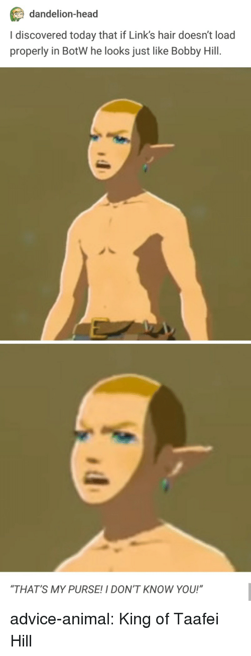 """botw: dandelion-head  I discovered today that if Link's hair doesn't load  properly in BotW he looks just like Bobby Hill.  """"THAT'S MY PURSE!I DON'T KNOW YOU!"""" advice-animal:  King of Taafei Hill"""