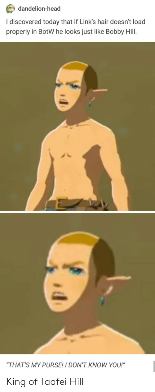 """botw: dandelion-head  I discovered today that if Link's hair doesn't load  properly in BotW he looks just like Bobby Hill.  """"THAT'S MY PURSE!I DON'T KNOW YOU!"""" King of Taafei Hill"""