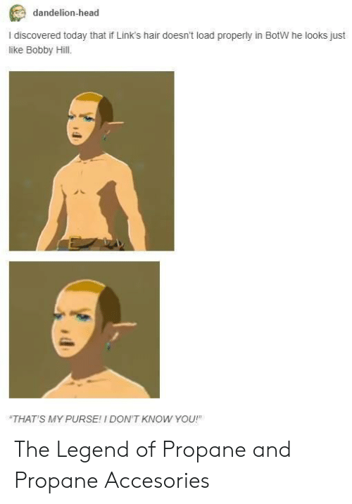 botw: dandelion-head  I discovered today that if Link's hair doesn't load properly in BotW he looks just  like Bobby Hill.  THAT'S MY PURSE! I DON'T KNOW YOU! The Legend of Propane and Propane Accesories
