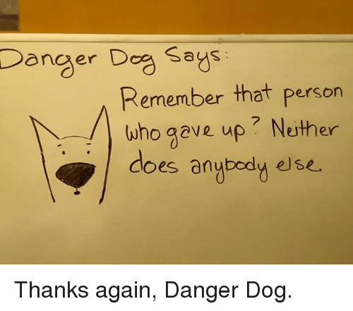 Memes, 🤖, and Personal: Danger Dog says  Remember that person  who gave up Neither  does anybody else. Thanks again, Danger Dog.