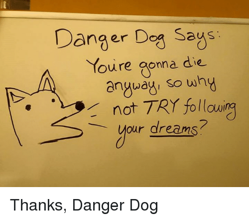 Memes, 🤖, and Dying: Danger Dog Says  Youre gonna die  anyway so wh  not TRY following  your dreams? Thanks, Danger Dog