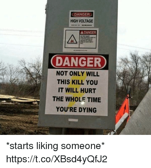 Funny, Awkward, and Time: DANGER  HIGH VOLTAGE  A DANGER  DANGER  NOT ONLY WILL  THIS KILL YOU  IT WILL HURT  THE WHOLE TIME  YOU'RE DYING *starts liking someone* https://t.co/XBsd4yQfJ2