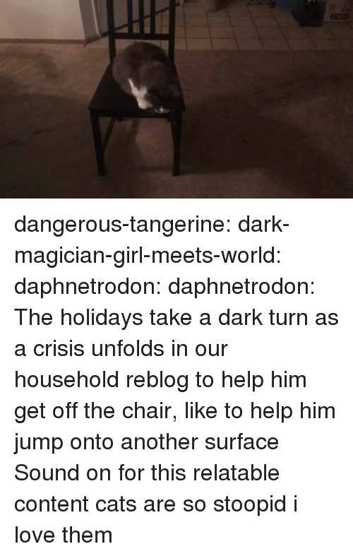 Stoopid: dangerous-tangerine: dark-magician-girl-meets-world:  daphnetrodon:  daphnetrodon:  The holidays take a dark turn as a crisis unfolds in our household  reblog to help him get off the chair, like to help him jump onto another surface  Sound on for this relatable content  cats are so stoopid i love them