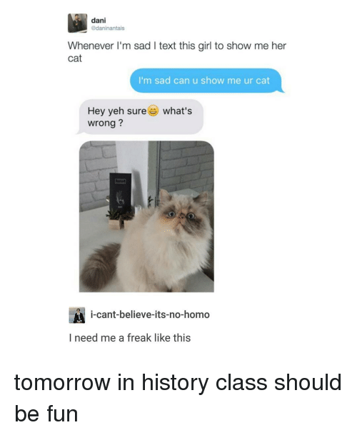 Cats, Girls, and No Homo: dani  @daninantais  Whenever I'm sad l text this girl to show me her  Cat  I'm sad can u show me ur cat  Hey yeh sure es what's  wrong?  i-cant-believe-its-no-homo  I need me a freak like this tomorrow in history class should be fun