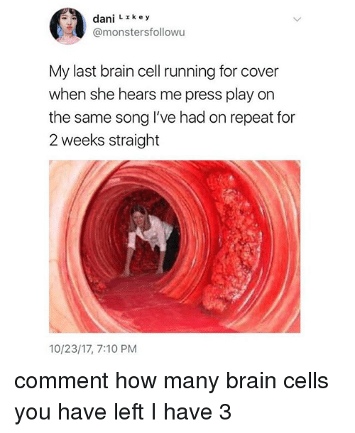 Brain, Girl Memes, and Running: dani L z key  @monstersfollowu  My last brain cell running for cover  when she hears me press play on  the same song I've had on repeat for  2 weeks straight  10/23/17, 7:10 PM comment how many brain cells you have left I️ have 3