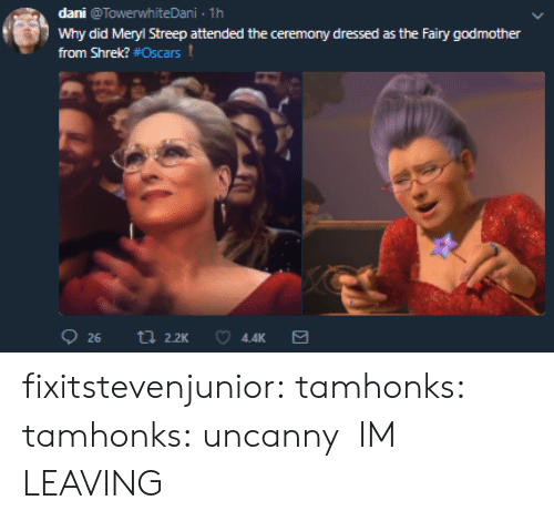 Meryl Streep: dani @TowerwhiteDani 1h  Why did Meryl Streep attended the ceremony dressed as the Fairy godmother  from Shrek? #Oscars t  4.4K fixitstevenjunior:  tamhonks:  tamhonks: uncanny    IM LEAVING