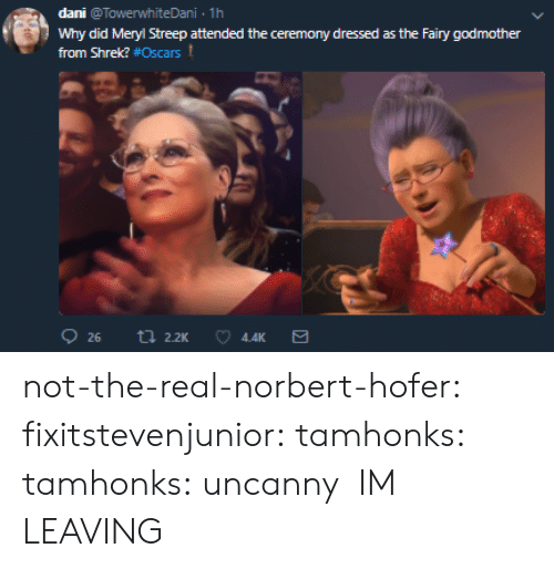 Meryl Streep: dani @TowerwhiteDani 1h  Why did Meryl Streep attended the ceremony dressed as the Fairy godmother  from Shrek? #Oscars t  4.4K not-the-real-norbert-hofer:  fixitstevenjunior:  tamhonks:  tamhonks: uncanny    IM LEAVING