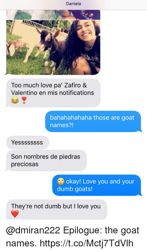 Sonned: Daniela  Too much love pa' Zafiro &  Valentino en mis notifications  bahahahahaha those are goat  names?!  Yessssssss  Son nombres de piedras  preciosas  okay! Love you and your  dumb goats!  They're not dumb but I love you @dmiran222 Epilogue: the goat names. https://t.co/Mctj7TdVlh