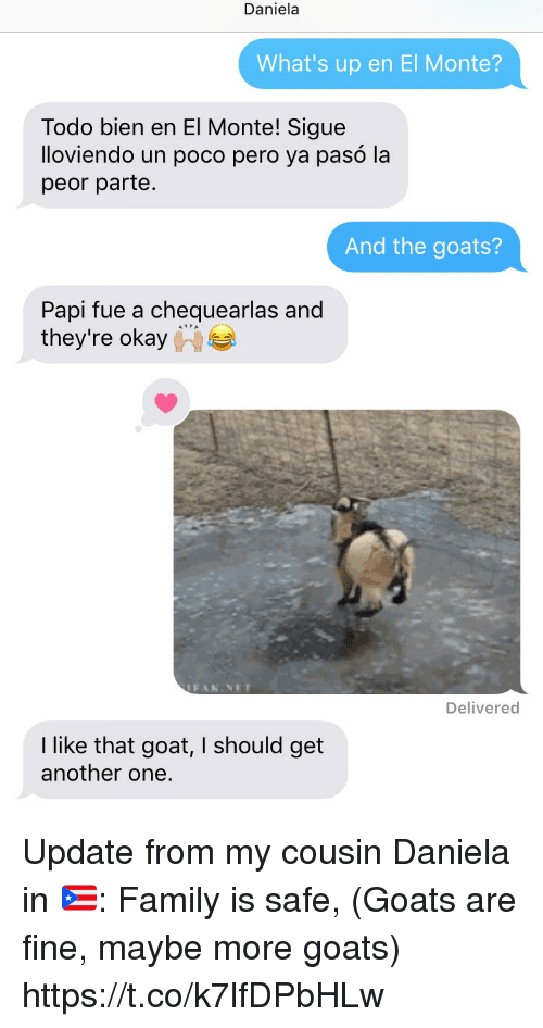"""Another One, Family, and Memes: Daniela  What's up en El Monte?  Todo bien en El Monte! Sigue  lloviendo un poco pero ya pasó la  peor parte.  And the goats?  Papi fue a chequearlas and  they're okay  """"  2  FAk.NET  Delivered  I like that goat, I should get  another one. Update from my cousin Daniela in 🇵🇷: Family is safe, (Goats are fine, maybe more goats) https://t.co/k7lfDPbHLw"""