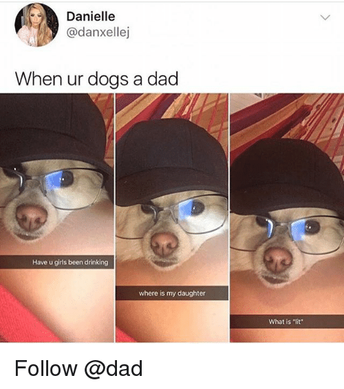 """Dad, Dogs, and Drinking: Danielle  @danxellej  When ur dogs a dacd  Have u girls been drinking  where is my daughter  What is """"lit"""" Follow @dad"""