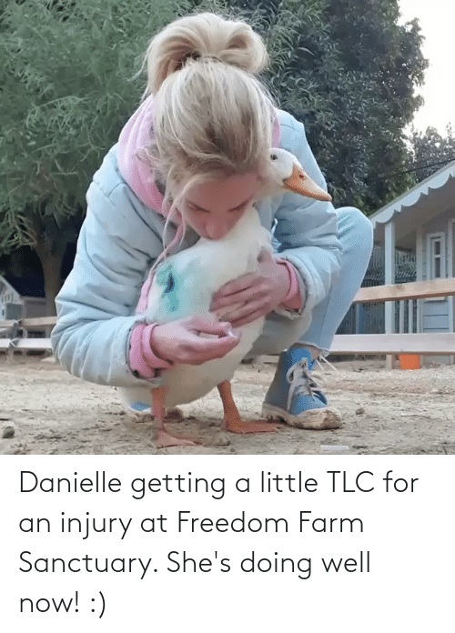 danielle: Danielle getting a little TLC for an injury at Freedom Farm Sanctuary. She's doing well now! :)