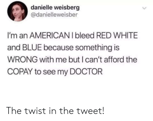 danielle: danielle weisberg  @danielleweisber  I'm an AMERICANI bleed RED WHITE  and BLUE because something is  WRONG with me but I can't afford the  COPAY to see my DOCTOR  > The twist in the tweet!