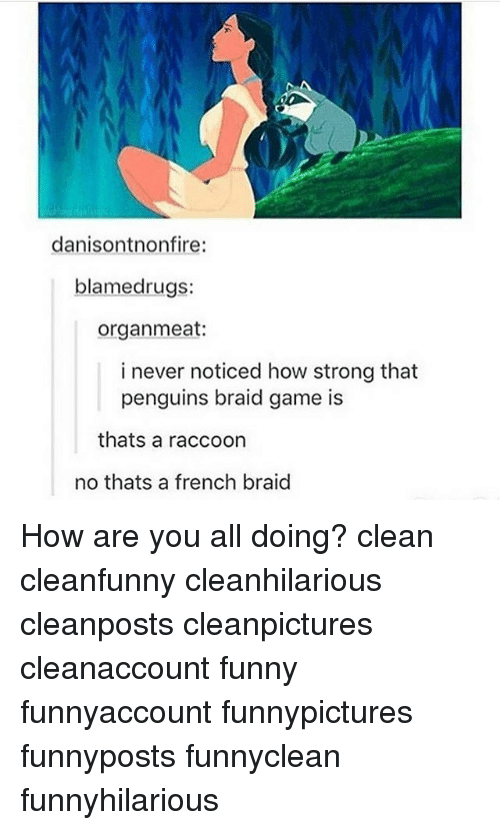braid: danisontnonfire:  blamed rugs:  organ meat:  i never noticed how strong that  penguins braid game is  thats a raccoon  no thats a french braid How are you all doing? clean cleanfunny cleanhilarious cleanposts cleanpictures cleanaccount funny funnyaccount funnypictures funnyposts funnyclean funnyhilarious