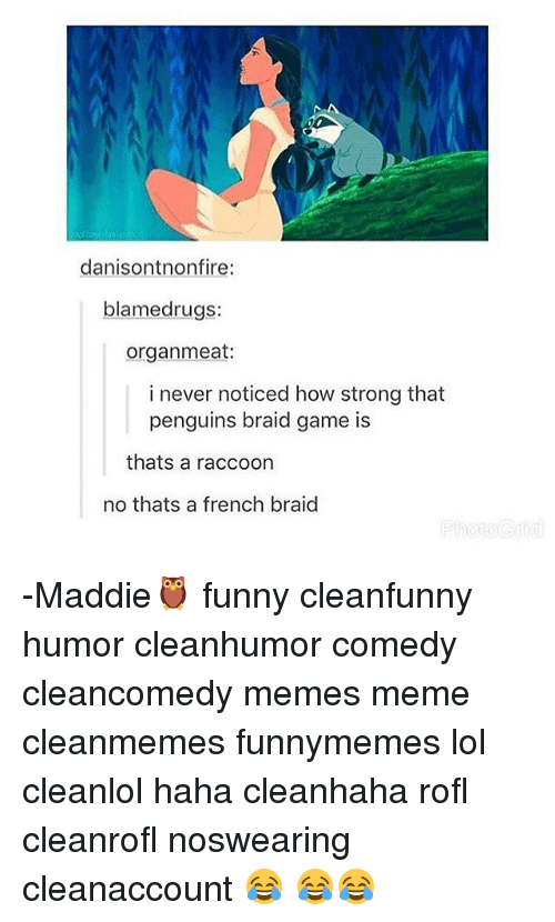 braid: danisontnonfire:  blamedrugs:  organ meat:  i never noticed how strong that  penguins braid game is  thats a raccoon  no thats a french braid -Maddie🦉 funny cleanfunny humor cleanhumor comedy cleancomedy memes meme cleanmemes funnymemes lol cleanlol haha cleanhaha rofl cleanrofl noswearing cleanaccount 😂 😂😂