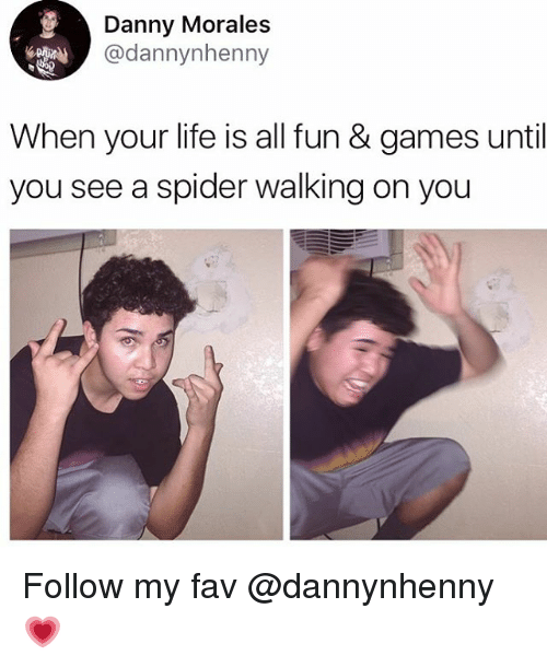 Life, Memes, and Spider: Danny Morales  @dannynhenny  When your life is all fun & games until  you see a spider walking on you Follow my fav @dannynhenny 💗