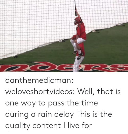 rain delay: danthemedicman:  weloveshortvideos:  Well, that is one way to pass the time during a rain delay   This is the quality content I live for