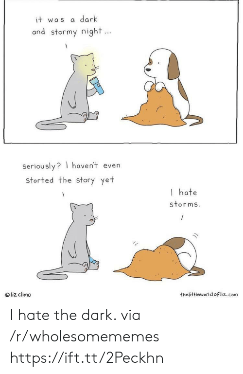 liz: dark  it was  and stormy night...  Seriously? haven't even  storted the Story yet  I hate  storms.  liz climo  thelittleworld ofliz.com I hate the dark. via /r/wholesomememes https://ift.tt/2Peckhn