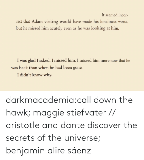 the universe: darkmacademia:call down the hawk; maggie stiefvater // aristotle and dante discover the secrets of the universe; benjamin alire sáenz