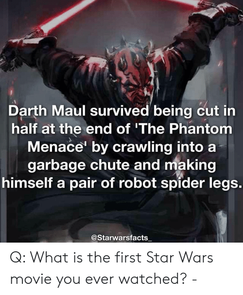 the phantom menace: Darth Maul survived being cut in  half at the end of 'The Phantom  Menace' by crawling into a  garbage chute and making  himself a pair of robot spider legs  @Starwarsfacts Q: What is the first Star Wars movie you ever watched? -